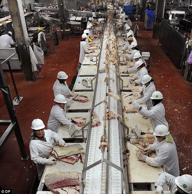 Cargill Foods High River Jobs